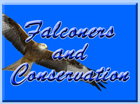 Falconry conservation