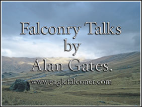 Falconry Talks by Alan Gates