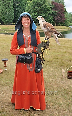 Jersey at the  Festival of Falconry